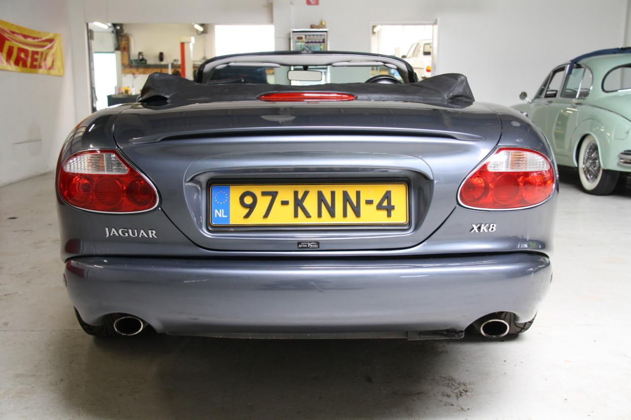 Jaguar XK 8 (16)