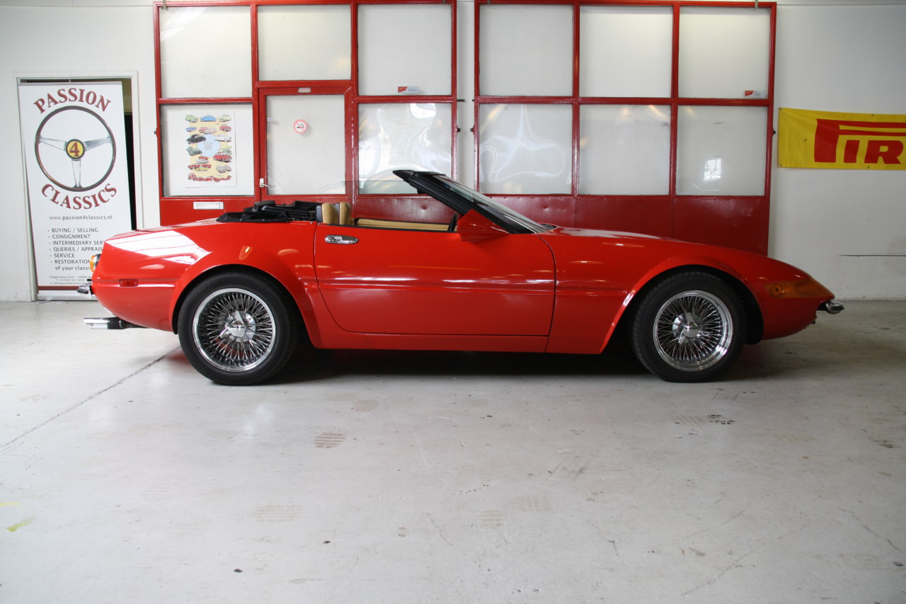 McBurnie Daytona (50)